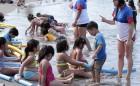 Talleres Gratuitos de Natación: Instituto Nacional del Deporte IND Inicia Programa de Seguridad en el Agua