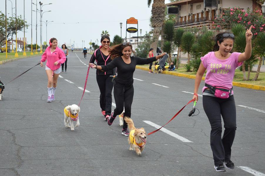 Corrida Canina fue Todo un Éxito