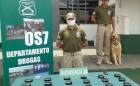 CAN DEL OS7 ARICA DETECTO SUJETO CON COCAINA PEGADA AL CUERPO