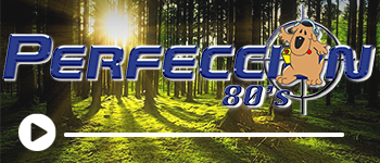 Radio Perfección 80s